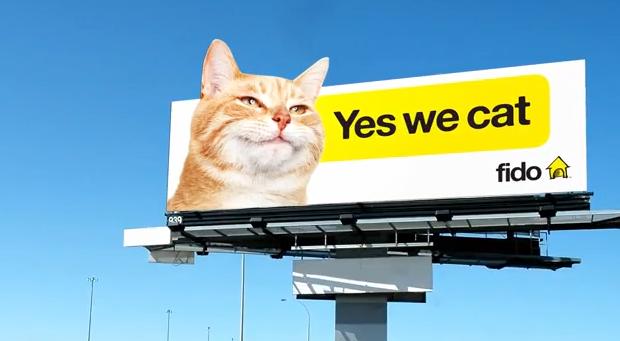 كيف تساعدك الحيوانات في التسويق لعلامتك التجارية